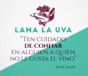 Lama-la-uva-detapasconchencho