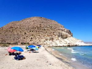 Guía del Parque Natural Cabo de Gata-Níjar (San José) Detapasconchencho